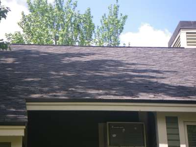 Curling Shingles.