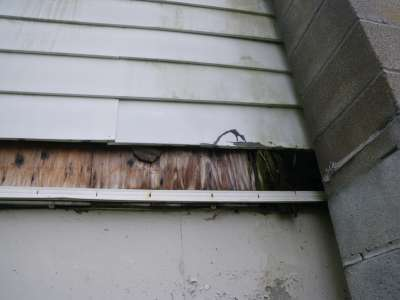 Rotten sill plate from prior deck.