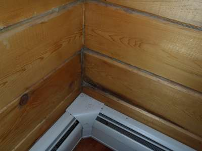 Log home water damage